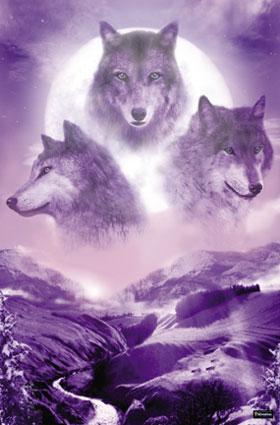 2825_Wolf